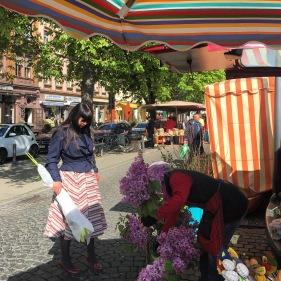 welch tolle Farben auf dem Offenbacher Wochenmarkt