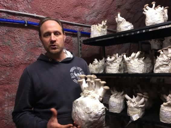 Hier erklärt mir Mathias den Vorgang des Beimpfen am Beispiel seiner Kräutersaitlinge.