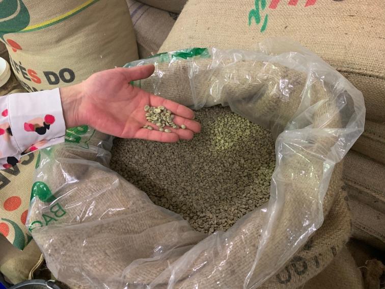 Grüne Kaffeebohnen! Rohkaffee vor dem Röstprozess