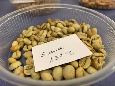 Kaffeebohnen nach einer Röstzeit von 5 Minuten bei einer Temperatur von 137 Grad
