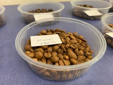 Kaffeebohnen nach einer Röstzeit von 15 Minuten bei einer Temperatur von 195 Grad